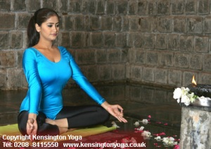 Kensington yoga centre
